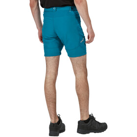 Regatta Sungari II Shorts Herrer, olympic/gulfstream